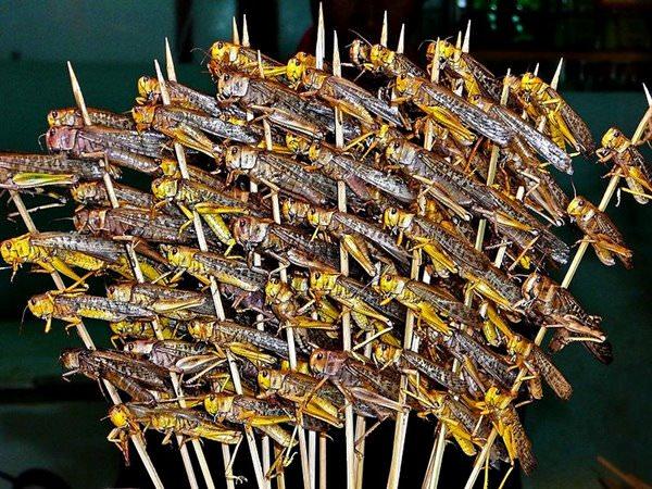 Saltamontes Fritos en Bangkok, Tailandia