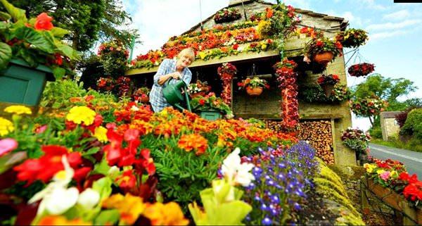 Дом-сад Анны и Робина Стрейдж, Великобритания