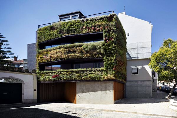House Garden in Lisbon, Portugal