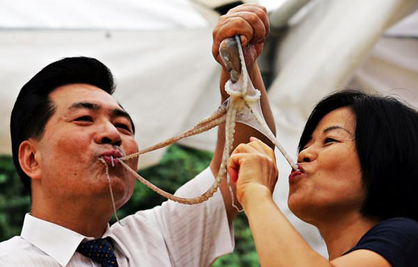 Живой осьминог Саннакчи, рестораны Сеула, Корея
