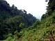 8 von 15 - Friedhof der Aliens im Dschungel von Rwanda, Ruanda