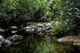 8 von 15 - Sinharaja Naturschutzgebiet, Sri Lanka