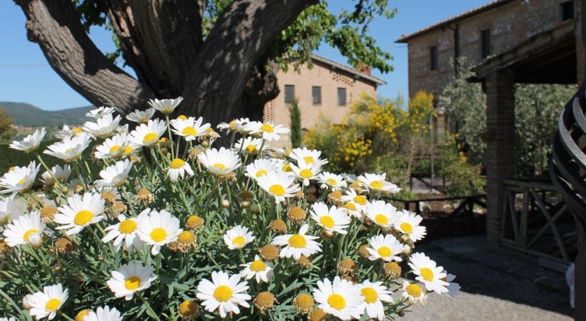 Foto of the hotel Casa Di Campagna In Toscana, Sovicille