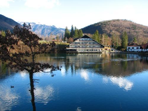 Foto van hotel  Bor & Grad Hrib, Preddvor